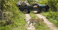 goway travel - southern africa